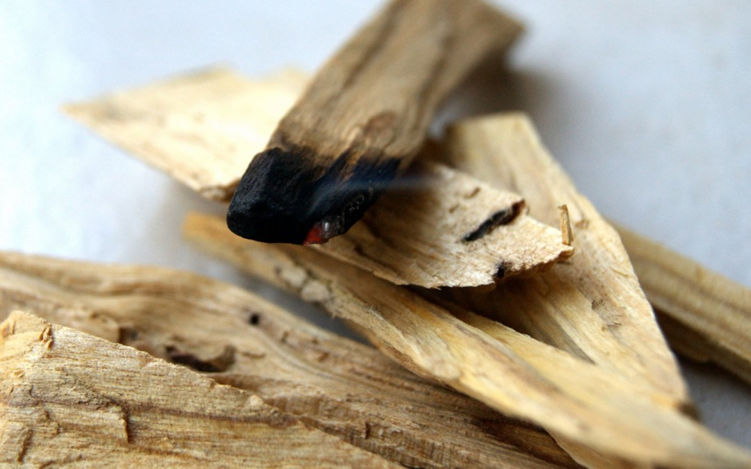 Palo Santo Wood Benefits and Uses