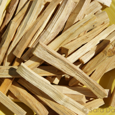 Wholesale Palo Santo